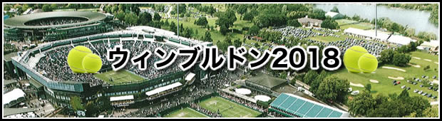 グランドスラムを観戦に行こうウィンブルドン テニス観戦 サポートプラン